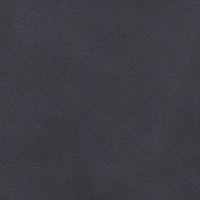 Cirrus Noir