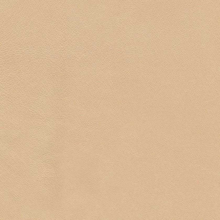 Porc fleur souple Sahara